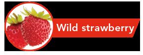 Sabor fresa silvestre